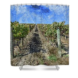 Napa Valley Vineyard - Rows Of Grapes Shower Curtain