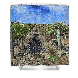 Napa Valley Vineyard - Rows Of Grapes Shower Curtain