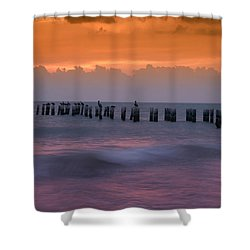 Naples, Florida Shower Curtain by Carolyn Dalessandro
