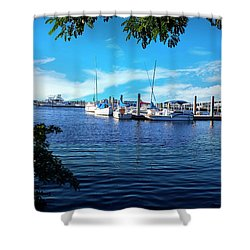 Naples Harbor Series 4054 Shower Curtain