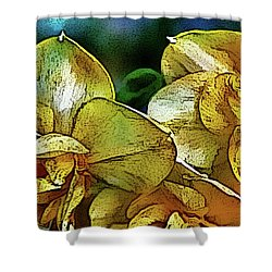 Shower Curtain featuring the photograph Narcissus by Jolanta Anna Karolska