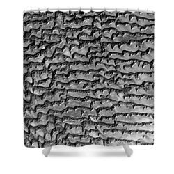 Nasa Image-rub' Al Khali, Arabia-3 Shower Curtain