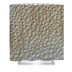 Nasa Image- Star Dunes, Algeria-2 Shower Curtain