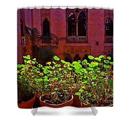 Nasturtium Vines At Isg Shower Curtain