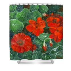 Nasturtiums Shower Curtain