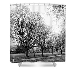 Natio Parkway Shower Curtain by Angi Parks