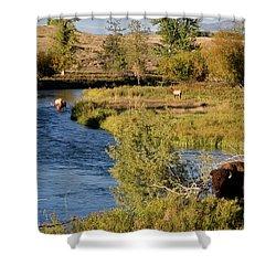 National Bison Range Shower Curtain