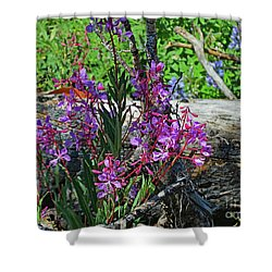 Shower Curtain featuring the photograph National Parks. From The Ashes To New Life. by Ausra Huntington nee Paulauskaite