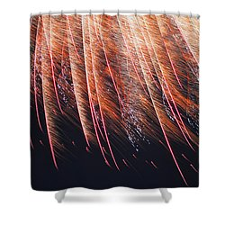 National Pride Was Earned In The Blood Of Revolution Shower Curtain by Carolina Liechtenstein