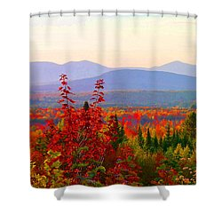 National Scenic Byway Shower Curtain