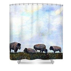 National Treasure - Bison Shower Curtain
