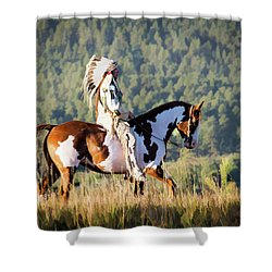 Native American On His Paint Horse Shower Curtain by Nadja Rider