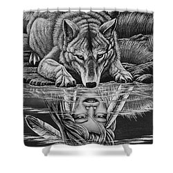Native Brothers Shower Curtain by Dennis Baswell