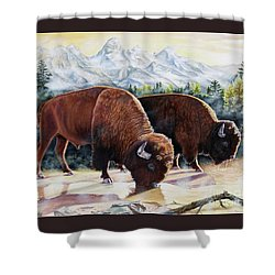 Native Nobility Shower Curtain