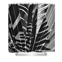 Natural 10 17c Shower Curtain
