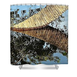 Natural 10 17h Shower Curtain