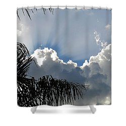 Natural 11 11 Shower Curtain