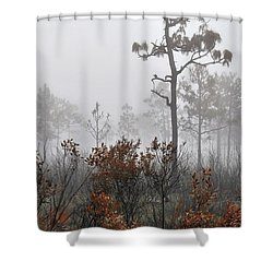 Natural 2 13 Shower Curtain