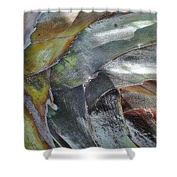 Natural 4 15 Shower Curtain