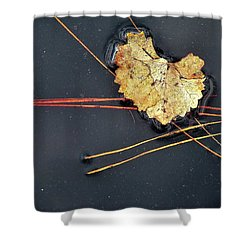 Natural 12 16 Shower Curtain