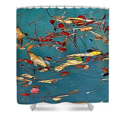 Natural 2 17 Shower Curtain