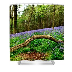 Natural Arch And Bluebells Shower Curtain by John Edwards