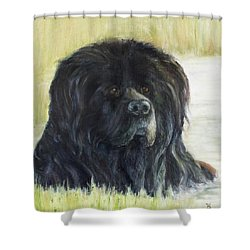 Natural Bath Shower Curtain
