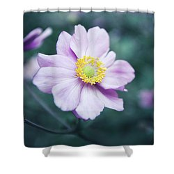 Shower Curtain featuring the photograph Natural Beauty by Hannes Cmarits