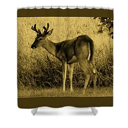 Natural Beauty- Vintage Version Shower Curtain