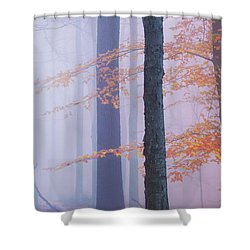 Natural Bliss Shower Curtain