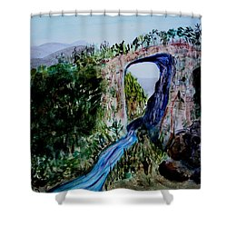 Shower Curtain featuring the painting Natural Bridge In Virginia by Donna Walsh