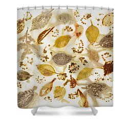 Natural Elements 1 Shower Curtain