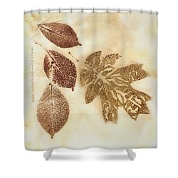 Natural Elements 10 Shower Curtain