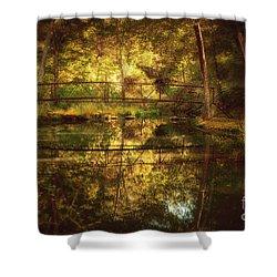 Natural Falls Bridge  Shower Curtain