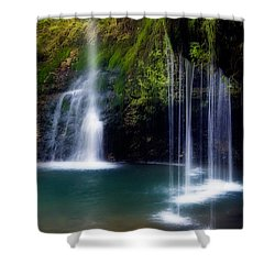 Natural Falls Shower Curtain