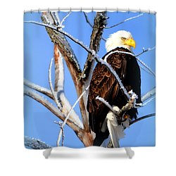 Natural Freedom Shower Curtain