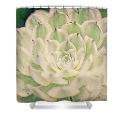 Shower Curtain featuring the photograph Natural Geometry by Ana V Ramirez