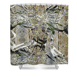 Natural Paths II Shower Curtain