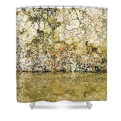 Shower Curtain featuring the photograph Natural Stone Background by Torbjorn Swenelius
