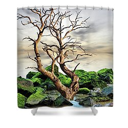 Natural Surroundings Shower Curtain