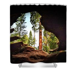 Natural Window Shower Curtain