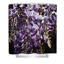 Natural Wisteria Bouquet Shower Curtain