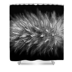 Naturally Soft Shower Curtain