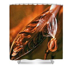 Nature 1 Shower Curtain