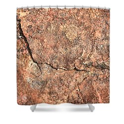 Nature Abstract - Cracked Shower Curtain by Carol Groenen