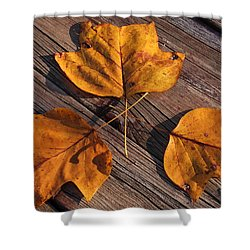Nature And Me Shower Curtain by Lyle Hatch