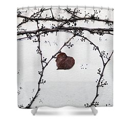 nature art photograph - Lonely Heart Leaf Shower Curtain