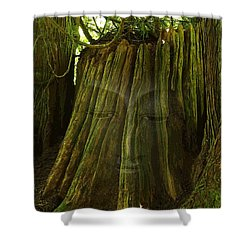 Nature Buddha Shower Curtain by I'ina Van Lawick