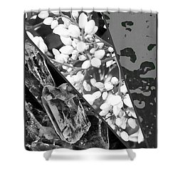 Nature Collage In Black And White Shower Curtain