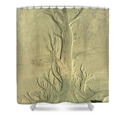 Shower Curtain featuring the photograph Nature Designs In Sand by Myrna Bradshaw